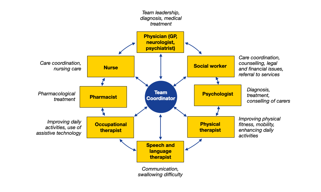 model of interprofessional network